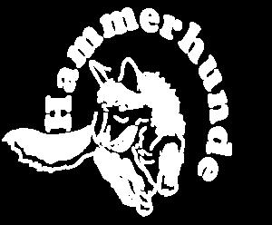 AC-Hammerhunde Logo